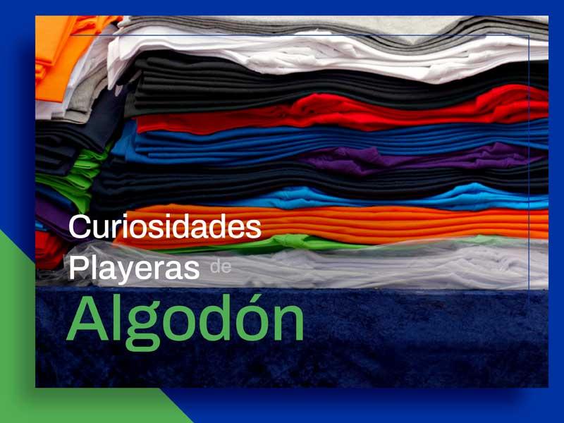 Datos de Interés Sobre el Algodón en Textiles